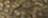 240091222-GOLDEN GREEN